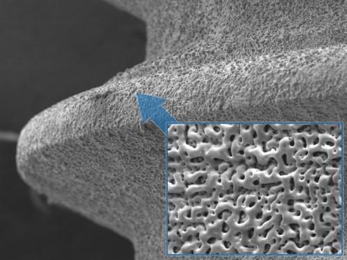 bề mặt trụ implant