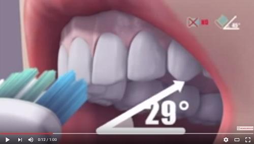 video hướng dẫn chải răng đúng cách