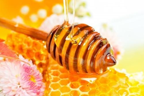 mật ong chữa viêm lợi