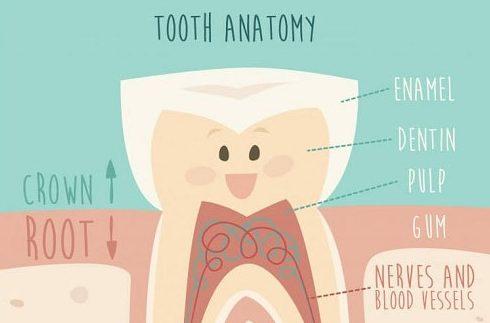 điều trị răng chết tủy như thế nào 1