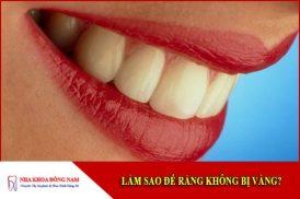 làm sao để răng không bị vàng