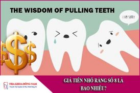 giá tiền nhổ răng số 8 là bao nhiêu
