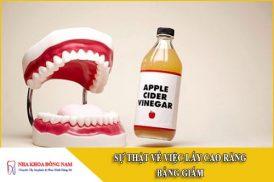 sự thật về việc lấy cao răng bằng giấm