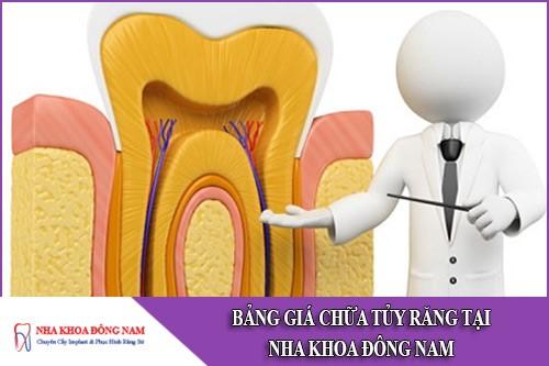 bảng giá chữa tủy răng tại nha khoa đông nam