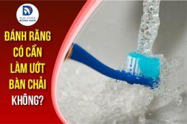 đánh răng có cần làm ướt bàn chải không