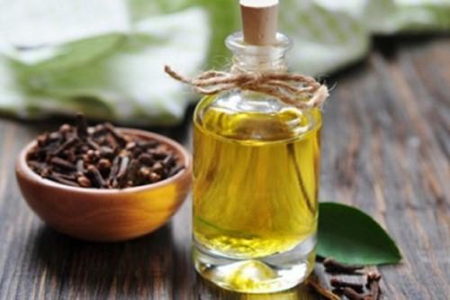 chữa viêm nướu với dầu đinh hương
