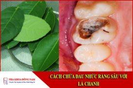 chữa đau nhức răng sâu với lá chanh