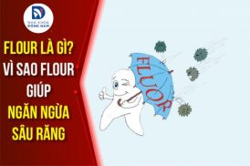 flour là gì