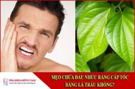 mẹo chữa đau nhức răng sâu bằng lá trầu không