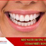 Một người trưởng thành có bao nhiêu răng?